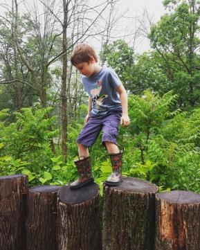 Nature play log balance