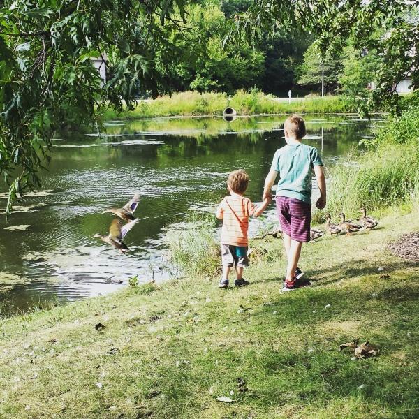 children duck pond