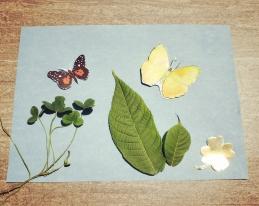 Butterfly Garden Solar Art